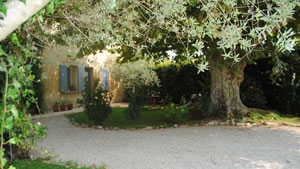 Bastide Valentine - Bed and Breakfast near Avignon, in Montfavet